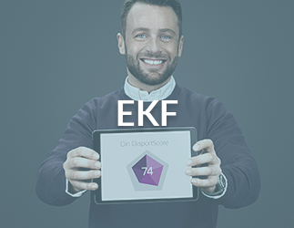 Inbound Marketing Case: EKF